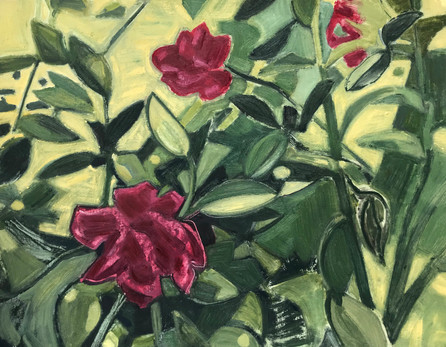 Untitled (Roses)