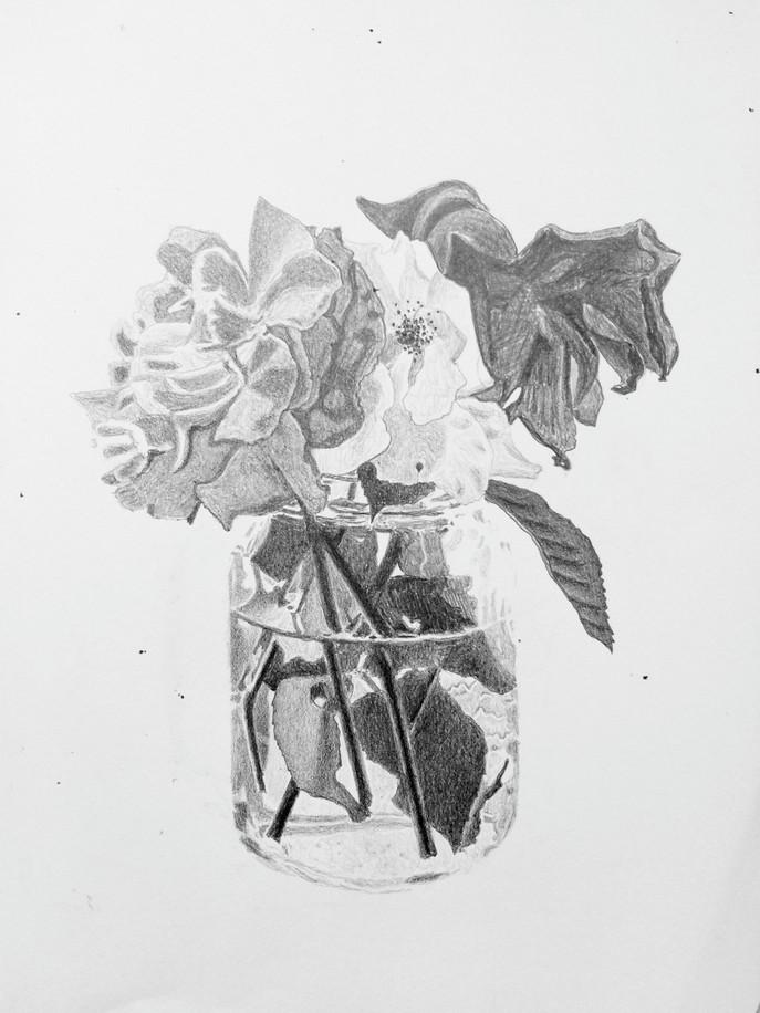 Flowers (10/5/19)