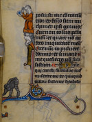 """This monkey situated in the lower margin of a folio from Stowe 17's Office of the Dead is pointing its pictogrammatic bum skyward in the direction of what seems to be an elaborate personification of thought - a crowned head with wings growing from the temples, out of which a woman rises, blowing a bubble from the end of a strand of hair. The first line of text on this page is an excerpt from Job 7:20: """"Quare posuisti me contrarium tibi...?"""" (Why hast thou set me contrary to thee?) The monkey punctuates the space just outside the narrator's thoughts, which drift toward a fantasy of disappearance by """"falling asleep in the dust"""" - in pulvere dormio. It seems to play a diminutive messenger of death, recalling the ur-function of art as grave-marker or effigy.   Image: British Library MS Stowe 17, Book of Hours (Maastricht, 1st quarter of the 14th cent.), f.202v. Text from Job 7:20-21."""