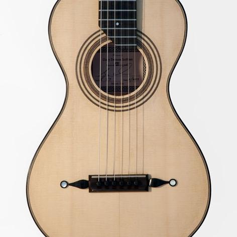 Historic Hybrid Guitar