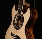Double-cutaway-acoustic-guitar-thumnail.