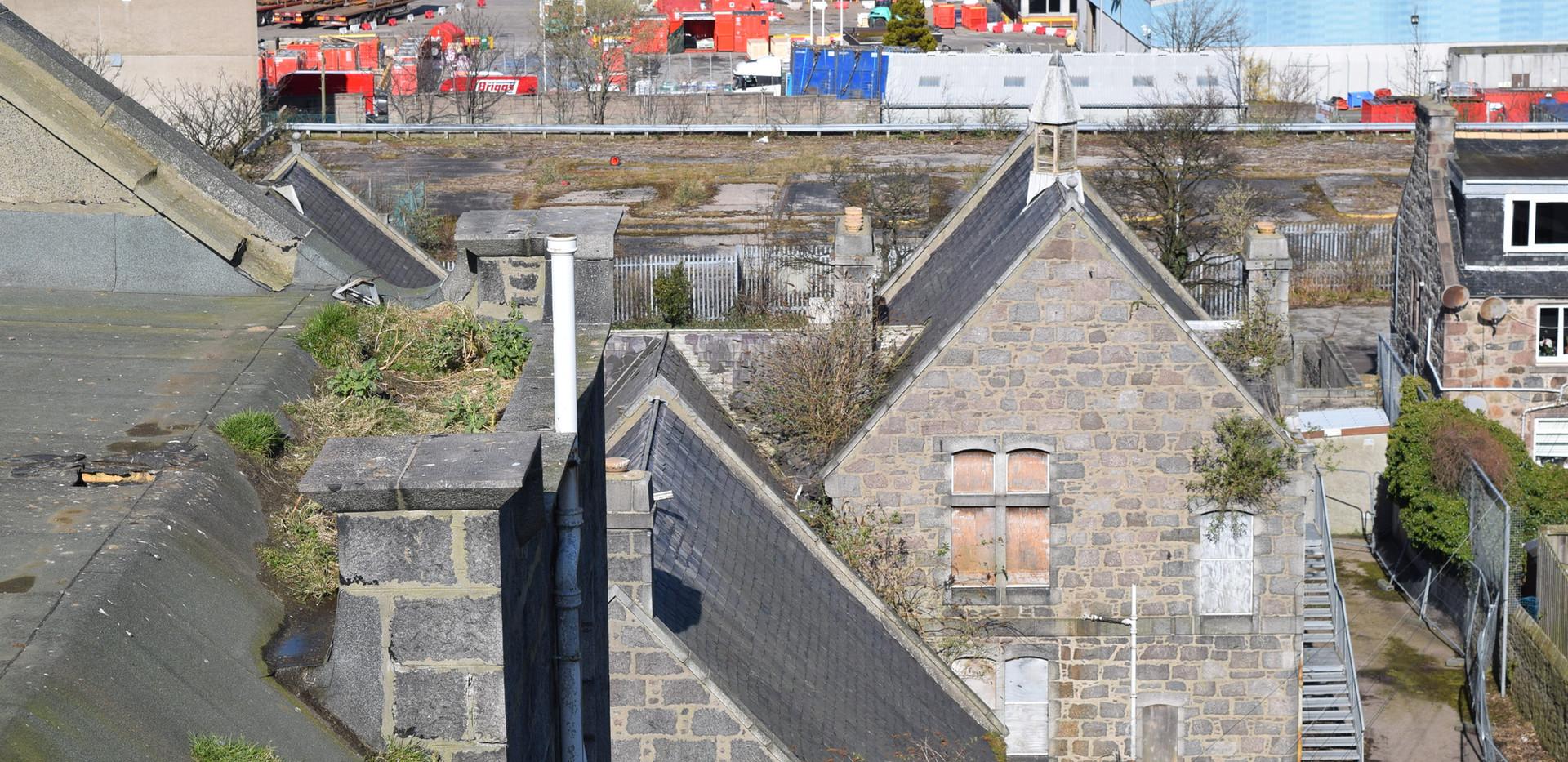 Rooftops of the Victoria Road School buildings