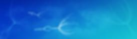 屏幕截图(278).png