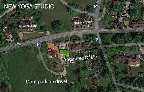 Yoga Tree of Life Map