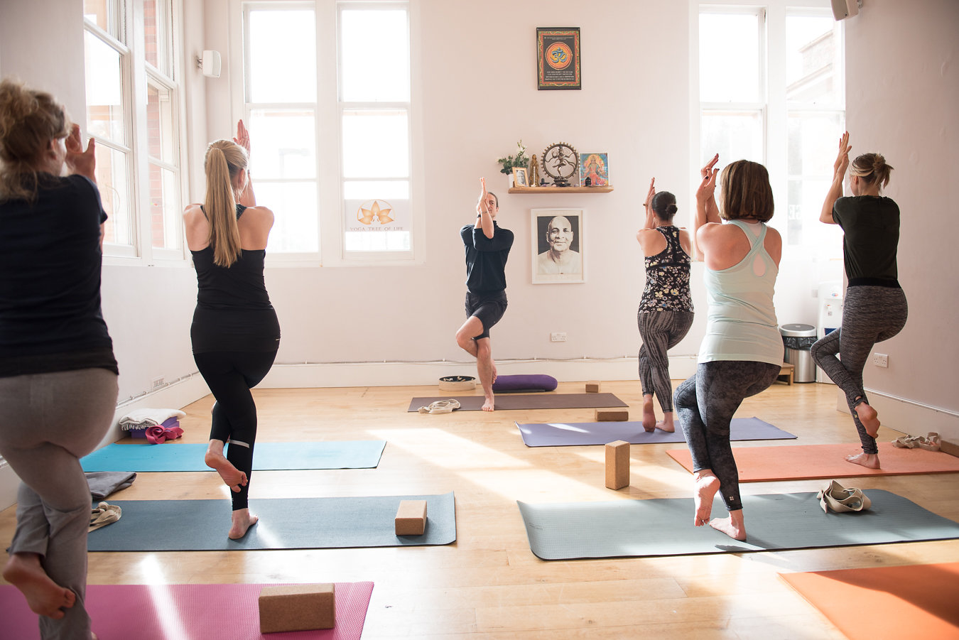 yoga beginners classes
