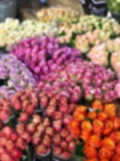 Flower Gallery.jpg