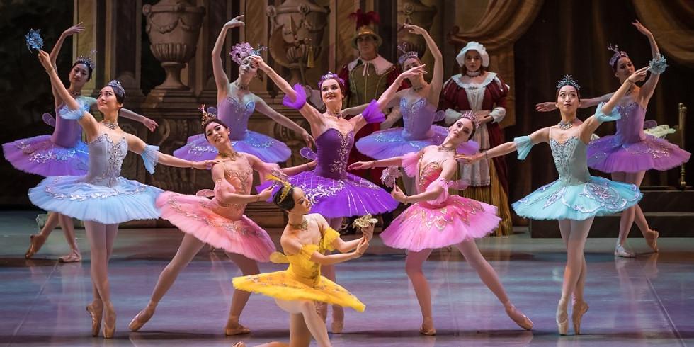 "Интерактивное занятия ""Спящая Красавица"" 4+ (Для гостей школы балета)"