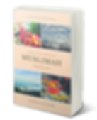 Subhana book cover 3D.png
