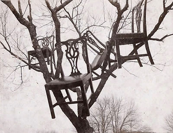 chairsintree.jpg