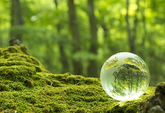 glass ball in woods.jpg