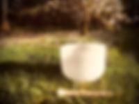 pic bowl.jpg