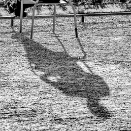 Dusk Shadows #1