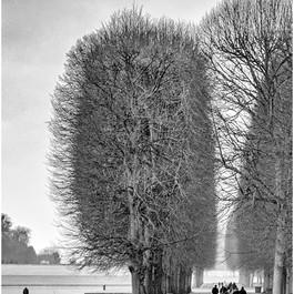 Le Parc du Versailles