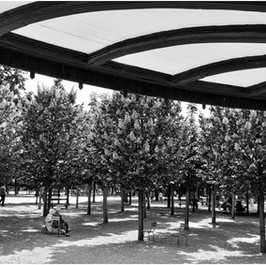 Tête à tête, Jardin du Luxembourg
