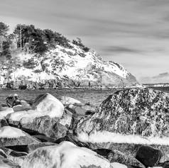 Iced Eagle Head