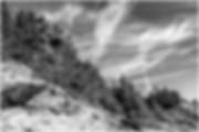 DSC_1307 Monhegan 3 SS.jpg