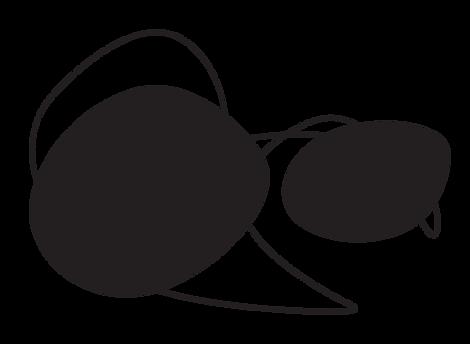 logo drew.png