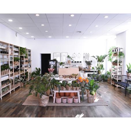 nowa lokalizacja naszego sklepu roślinnego