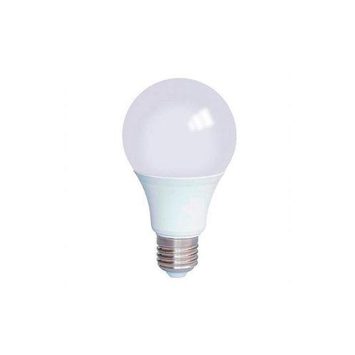Lâmpada Bulbo LED 9W 6500 K