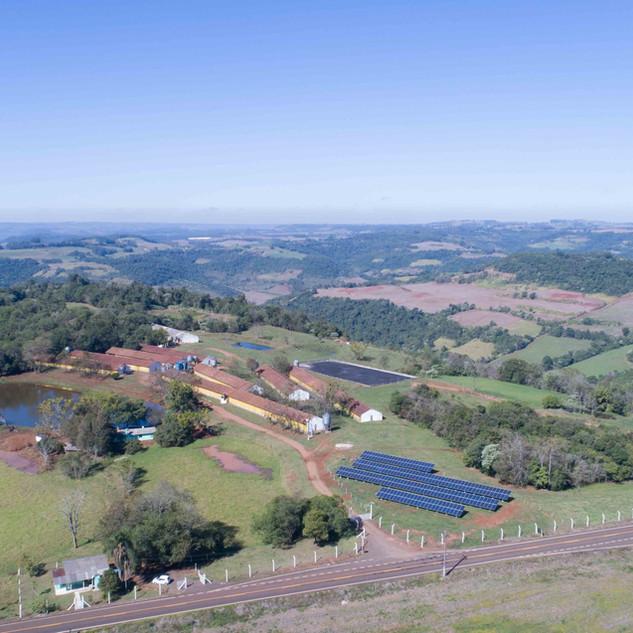 Projeto Rural