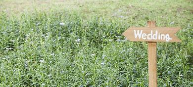травы для любовных приворотов, травы для приворотов, приворотные травы, приворот на траву, приворот на травы, любовный приворот на траву, любовный приворот на травы, заговор на траву, заговор на травы, любовный зоговор на траву, заговоры на продажу дома, заговоры на продажу машины, заговоры на работу, заговоры на счастье, заговоры на торговлю, заговоры на удачу в делах, заговоры на удачу в жизни, заговоры на удачу деньги заговоры на удачу и везение, заговоры наталья степанова, заговоры от заговоры от болезней, заговоры сибирской, заговоры сибирской целительницы, заказать приворот, заклинание, заклинание на любовь, заклинания, защита от порчи, защита от сглаза и порчи, как вернуть, как вернуть бывшего парня, как вернуть бывшую девушку, как вернуть девушку, как вернуть девушку психология, как вернуть деньги, как вернуть доверие парня, как вернуть любимого парня, как вернуть любимого человека, как вернуть любовь как вернуть любовь девушки, как вернуть любовь жены, как вернуть любовь