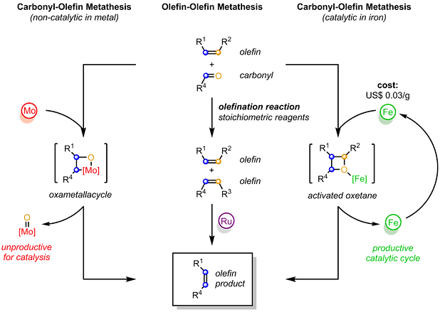 olefin metathesis mechanism Olefin metathesis olefin metathesis, or alkene metathesis, is an important process in petroleum refining and in the synthesis of important compounds such as pharmaceuticals.