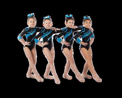 2019-20 L3 team.cutout