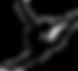 gymnast logo_edited.png