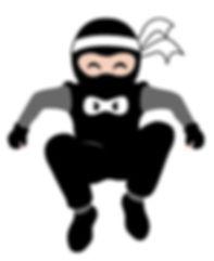 jumping ninja.jpg