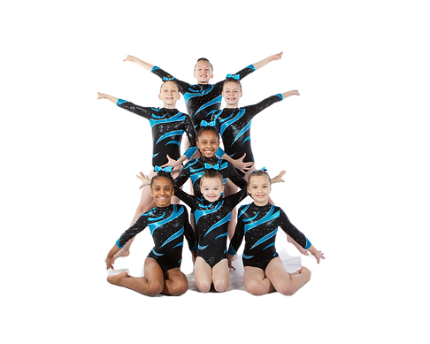 2019-20 L5 team.cutout