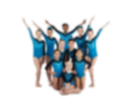 2019-20 Silver team.cutout