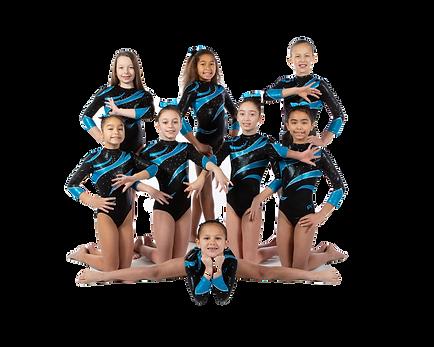 2019-20 L4 team.cutout