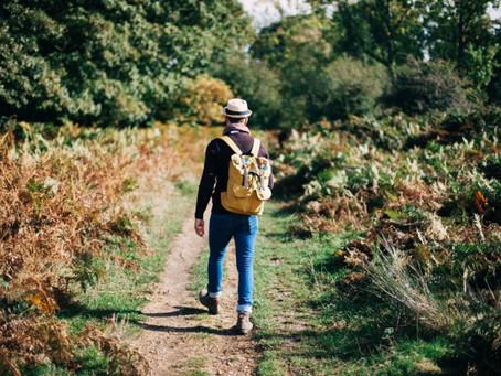 Waarom kan je best regelmatig bewegen bij stress?