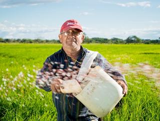 Los beneficios del Internet en la Agro Industria