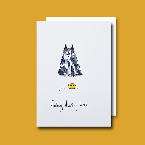 Fkn Starving Cat card