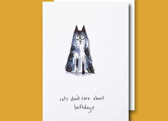 Cats Don't Care Birthday card