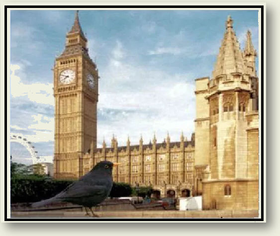 The Blackbird's Story - Heading.jpg
