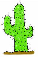prickly cactus.jpg