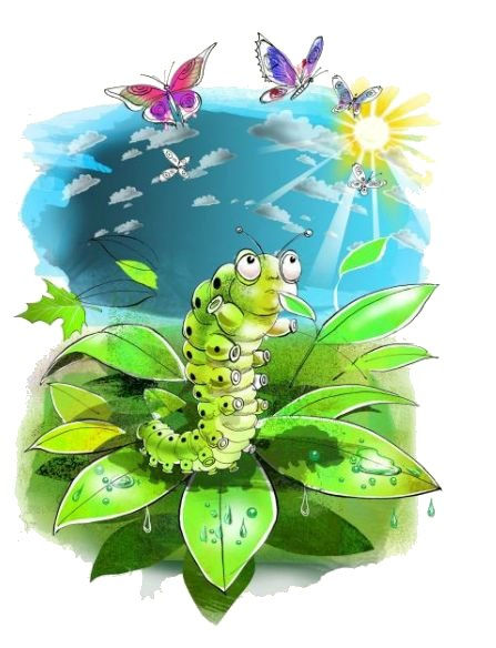 Little Green Caterpillar  - Peter Hudspith .jpg