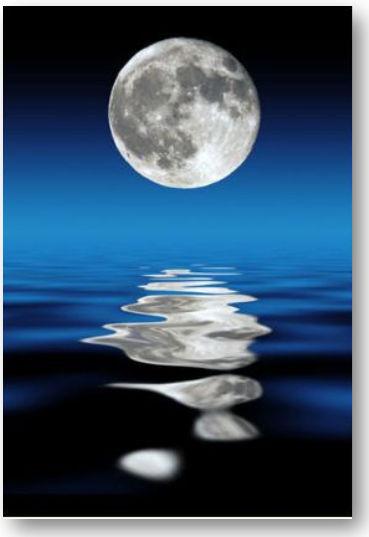 Moon Steps - Heading .jpg