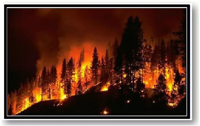 Fire - Heading .jpg