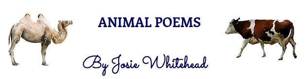 Animal Poems wix  1.jpg