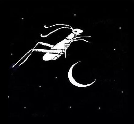 Hop Little Grasshopper .jpg