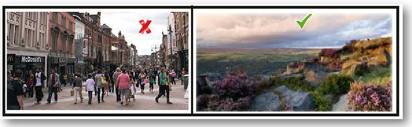 Road I'll Take (The) Wix.jpg