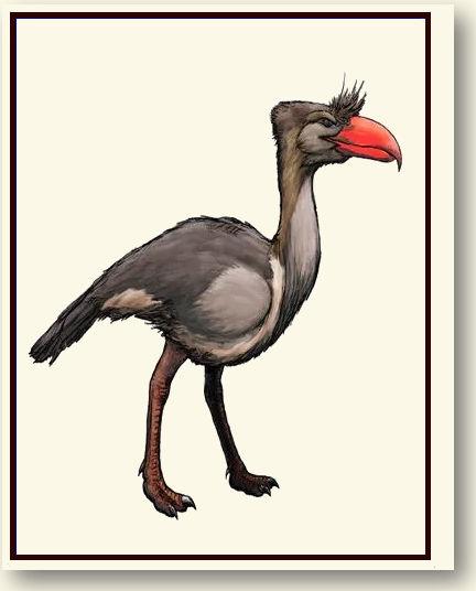 Terror Bird )The) .jpg