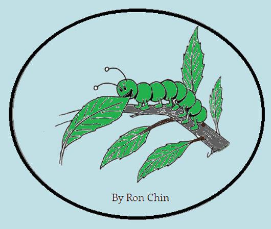 Greedy Young Caterpillar - Heading .jpg