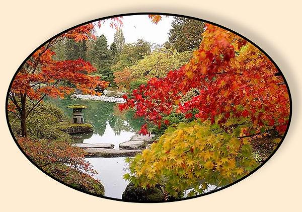 Autumn Tree Talk .jpg