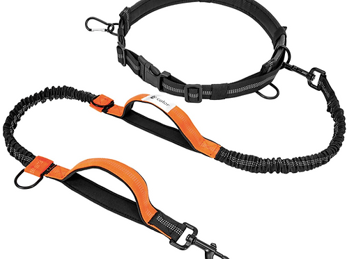 Hands Free Dog Leash F-color Reflective Running Dog Leash with Double Padded Han