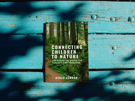 Overview of the The Book:  Connecting Children to Nature