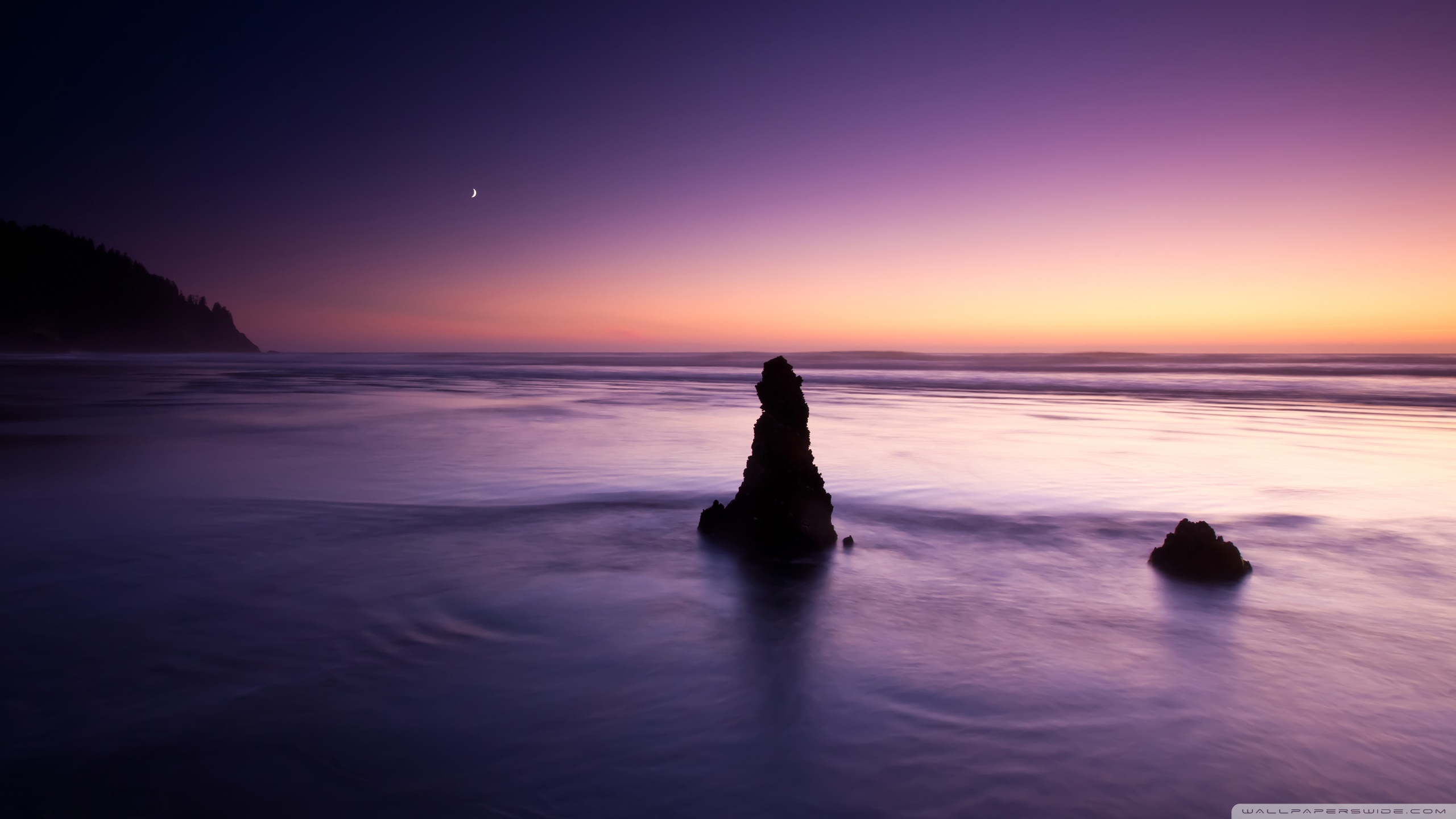 purple_evening_on_the_beach-wallpaper-2560x1440